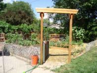 Summer 2014 Garden